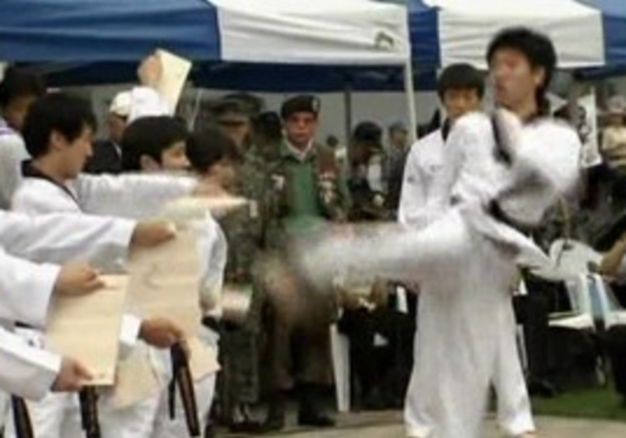 S Koreas celebrate 66th independence day