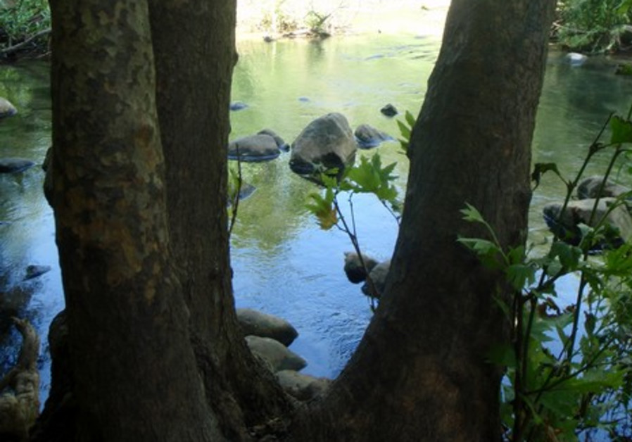 Zaki water hike