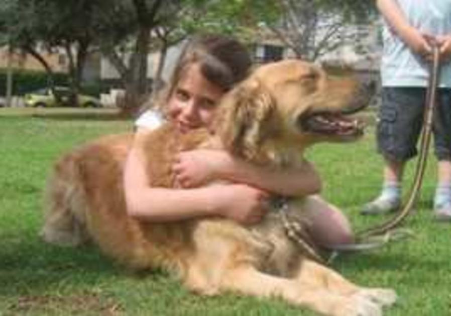 Dog and Girl 311