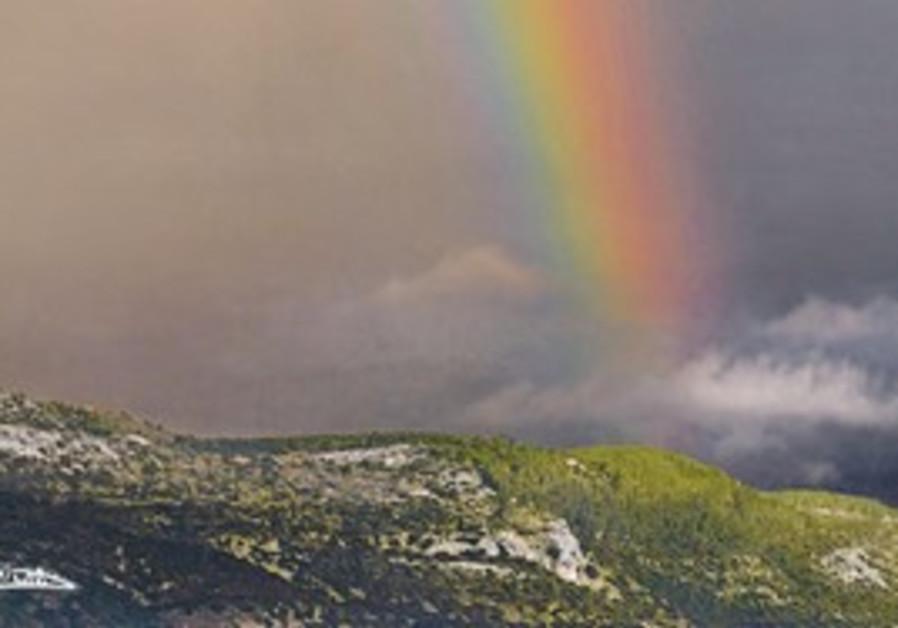 Rainbow (illustrative).