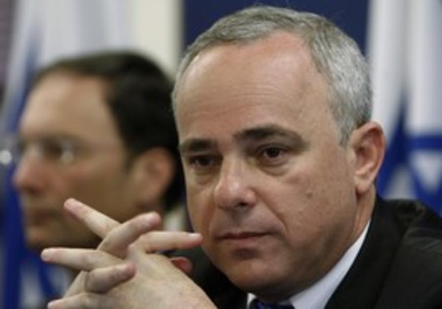 Finance Minister Yuval Steinitz (file)