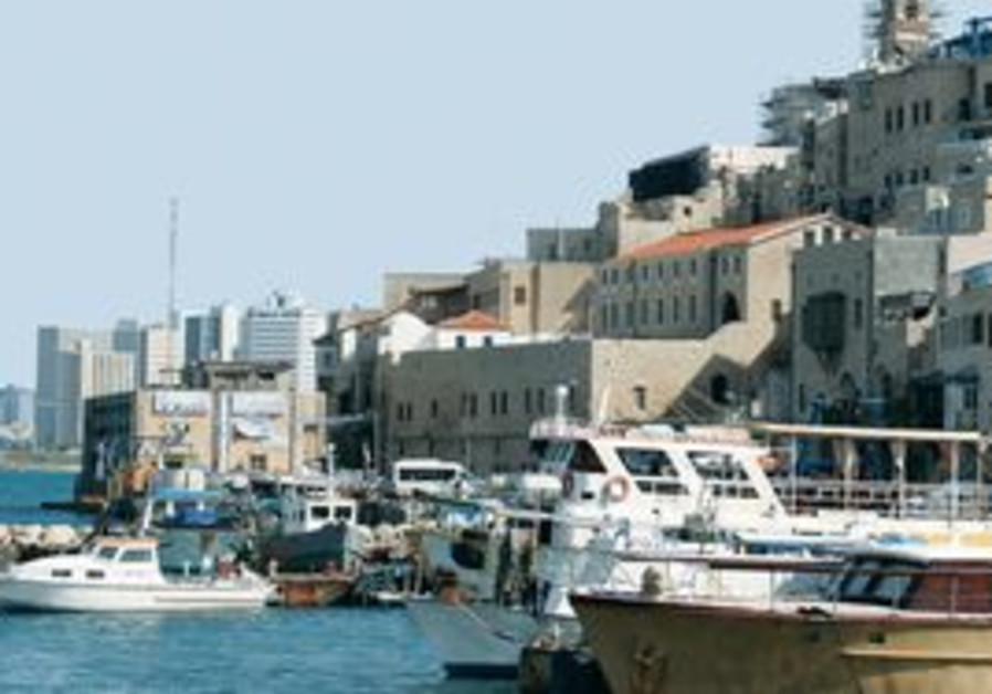 Jaffa 311