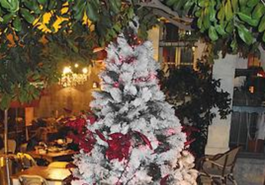 A CHRISTMAS tree in Haifa