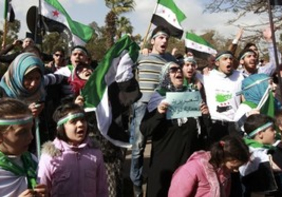 Syria anti-gov't protesters in Cairo