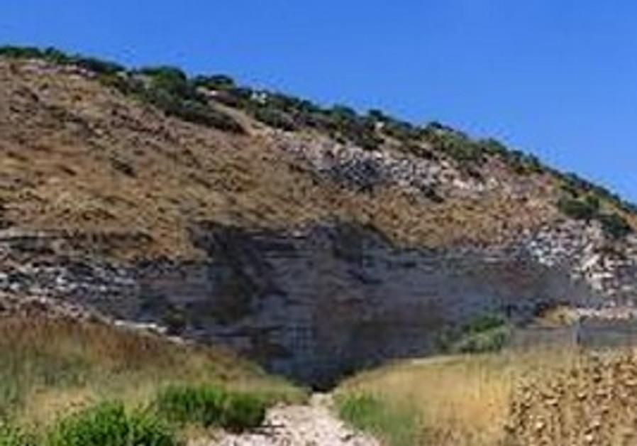 Elah valley brook