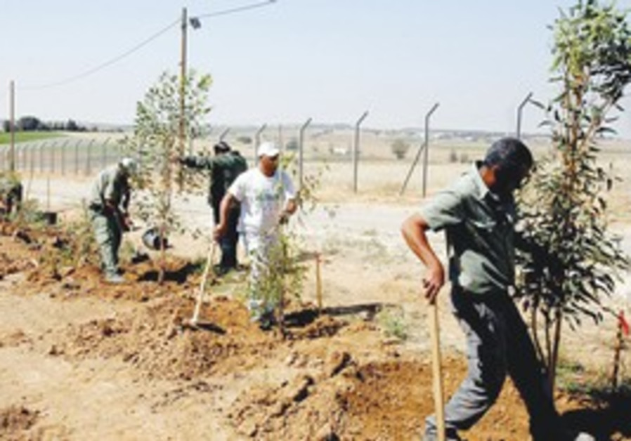 Keren Kayemeth LeIsrael plants trees along border