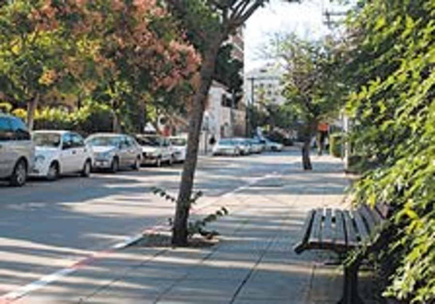 amrani street 88 224