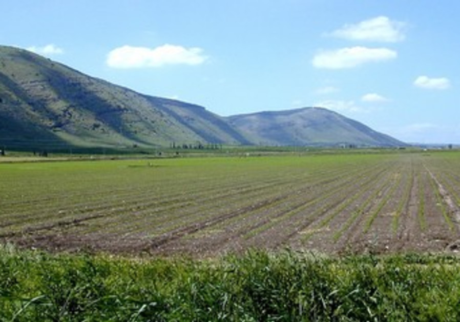 Mt Gilboa from east