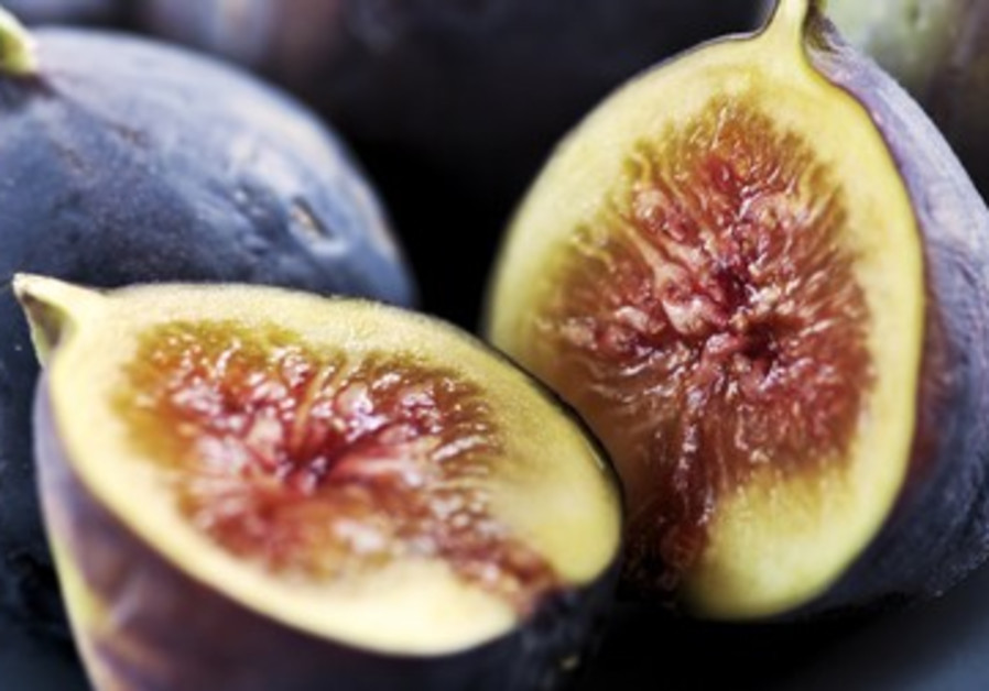Figs are perfect for this time of year