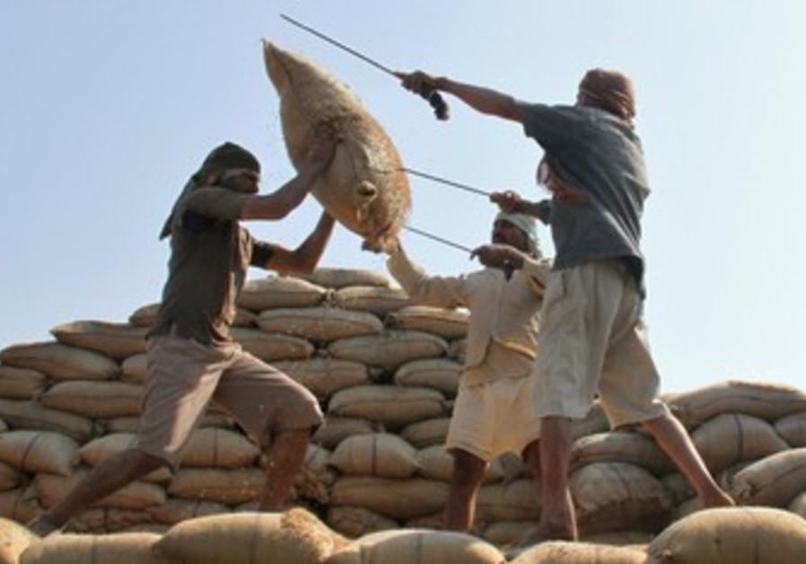Rice ban (illustrative)