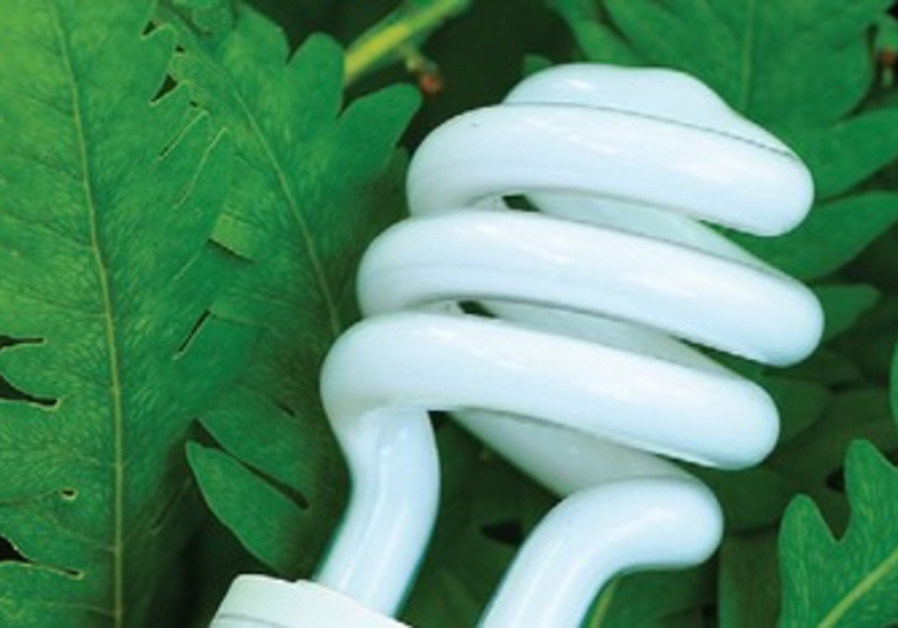 compact flourescent light bulb