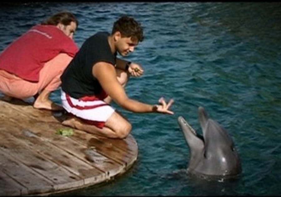 Morad with dolphin