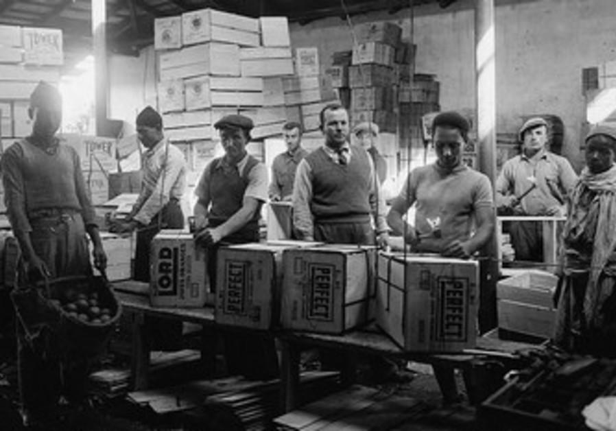 Jaffa orange factory