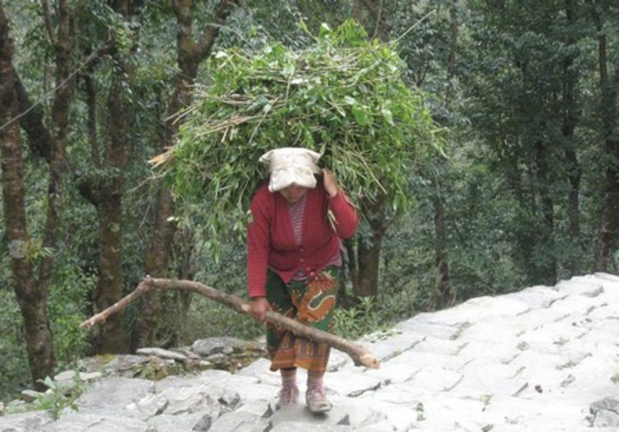 Trecking in Nepal.