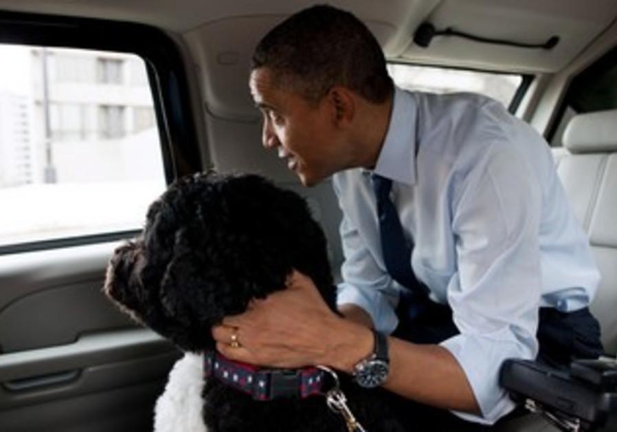 US President Barack Obama with his dog Bo.