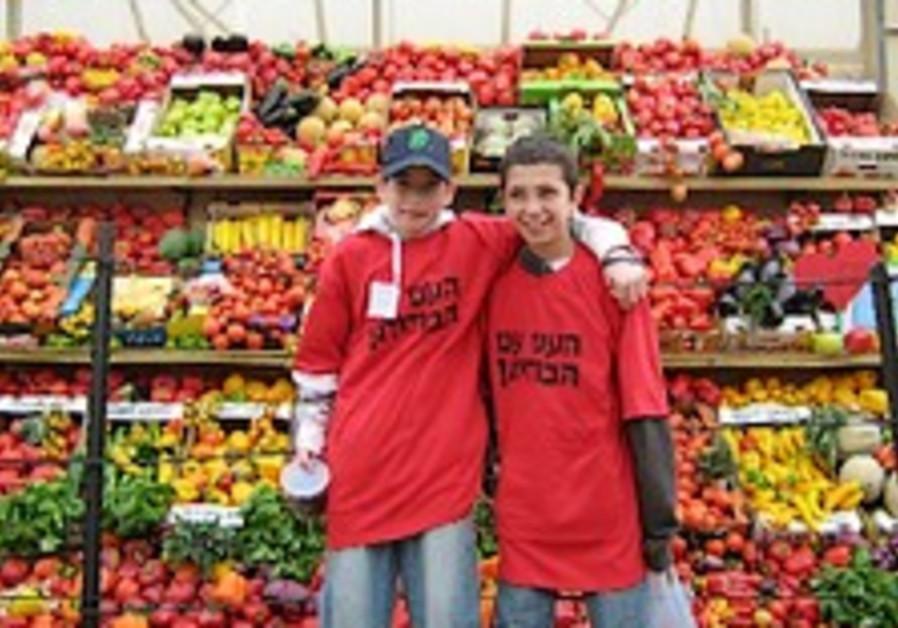 MK Regev to fight against VAT on produce