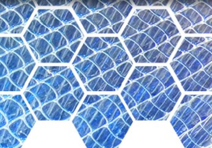 TGI Honeycomb Collector