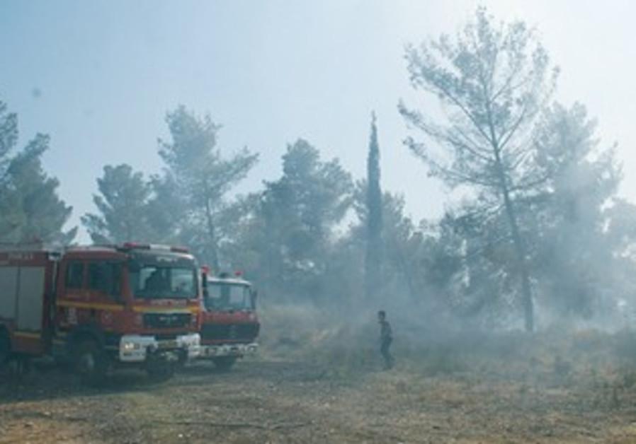 Jerusalem firefighters battle wildfire