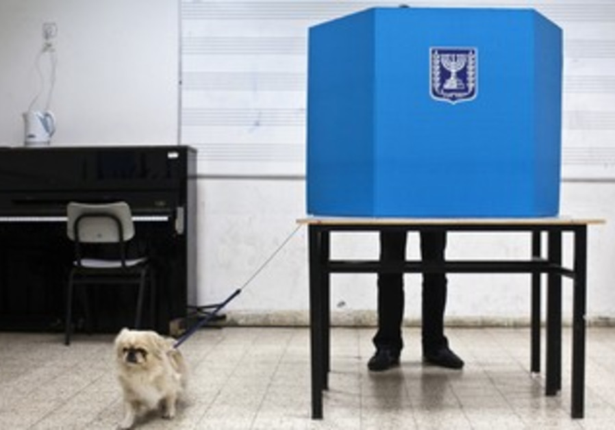 A Tel Aviv man votes with his dog