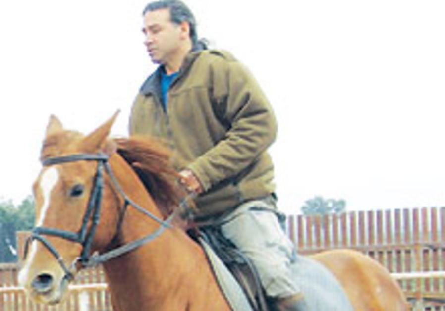 Life at the gallop