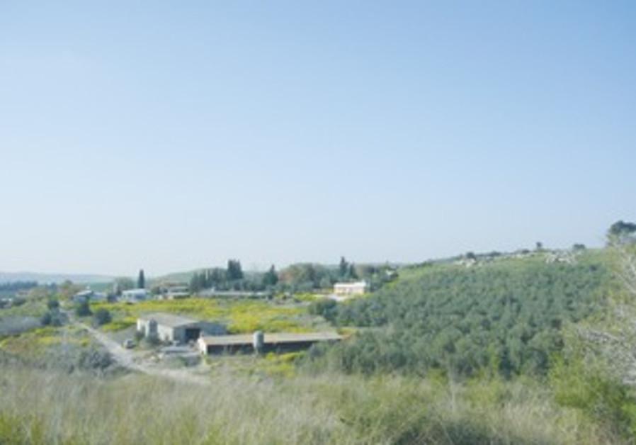 Moshav Taoz in the Judean Hills