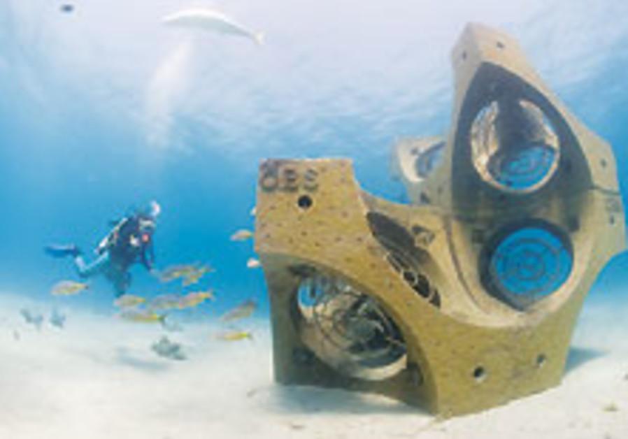 Concrete and corals?