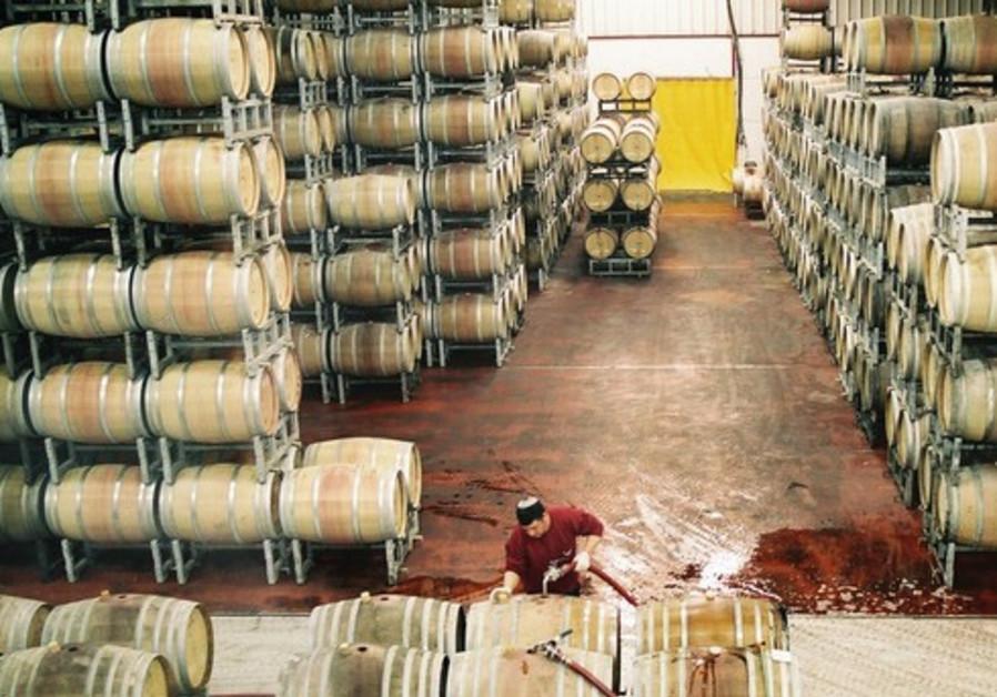 Les tonneaux de vin sont lavés dans une cave du Vignoble du Plateau du Golan