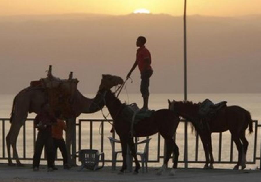 Bedouin boys in the Dead Sea, some 40 km southwest of Amman, November 4, 2010.