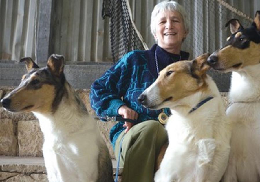 Myrna Shiboleth avec 3 de ses colleys à poil court