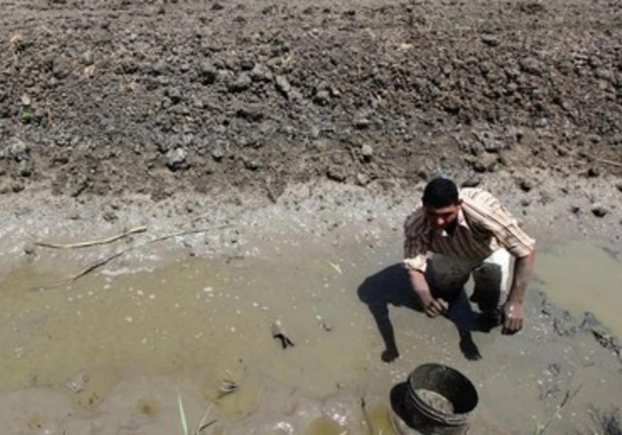 Un fermier égyptien tente d'irriguer ses terres affectées par la sécheresse.