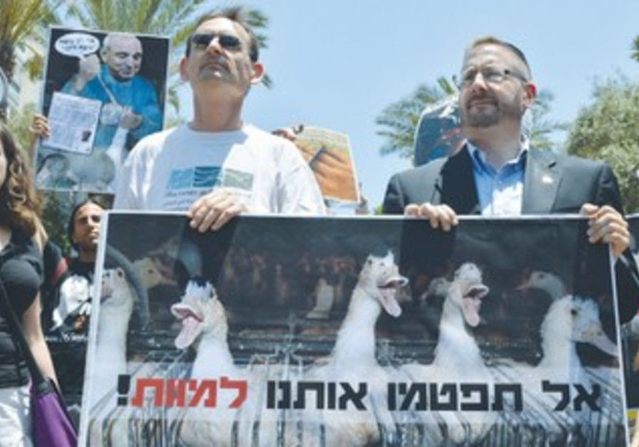 Animal rights activists protest against blockage of ban on foie gras.