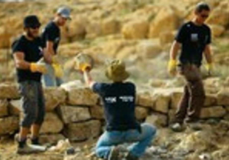 Des bénévoles de l'organisation Hashomer Hahadash dans un vignoble près de Mitspe Ramon