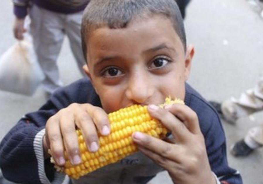 Syrian boy eats corn in Aleppo