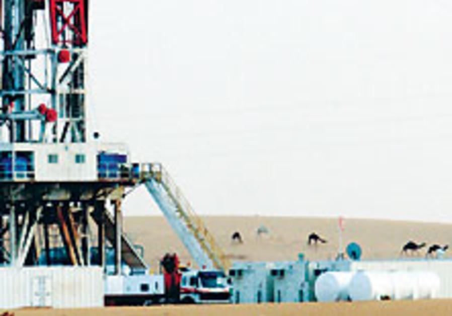 Saudi Arabia preparing for oil demand to peak