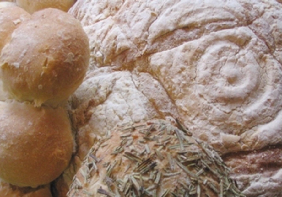 Part of a baker's skill is understanding how yeast and, hence dough, is influenced by environment