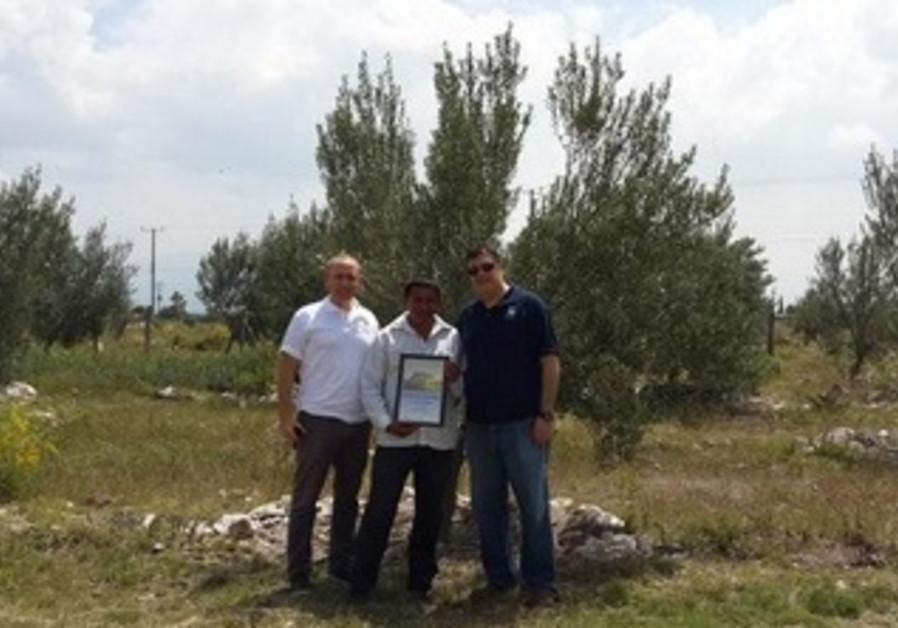 15,000 Olive Trees in Ixmiquilpan Hidalgo, México