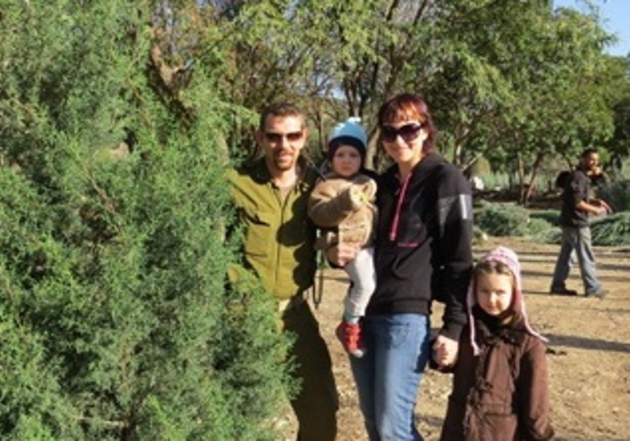 Christmas Tree Distribution in Israel-1