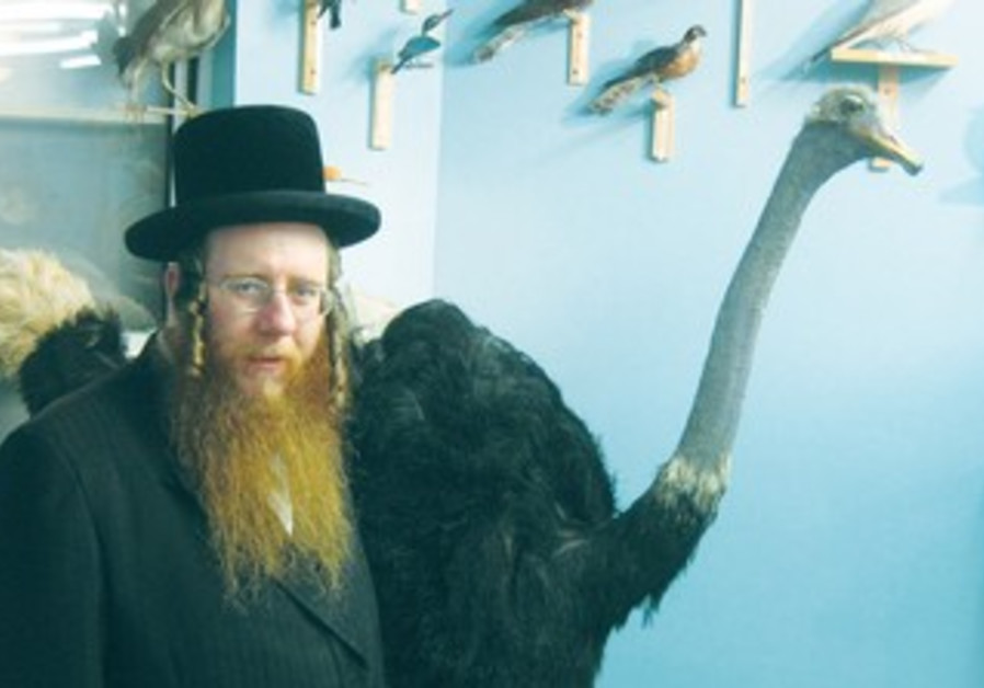 A HASSIDIC man stands in front of a stuffed ostrich