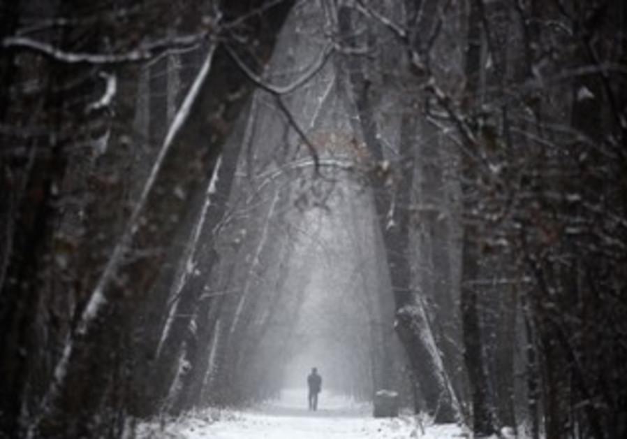 A man walks through a forest in western Ukraine.
