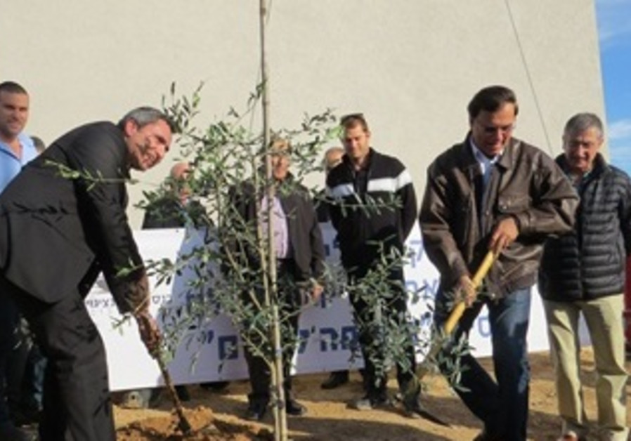 Projects in the Negev-1