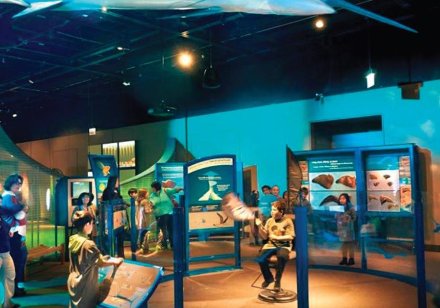 Jerusalem's Bloomfield Science Museum