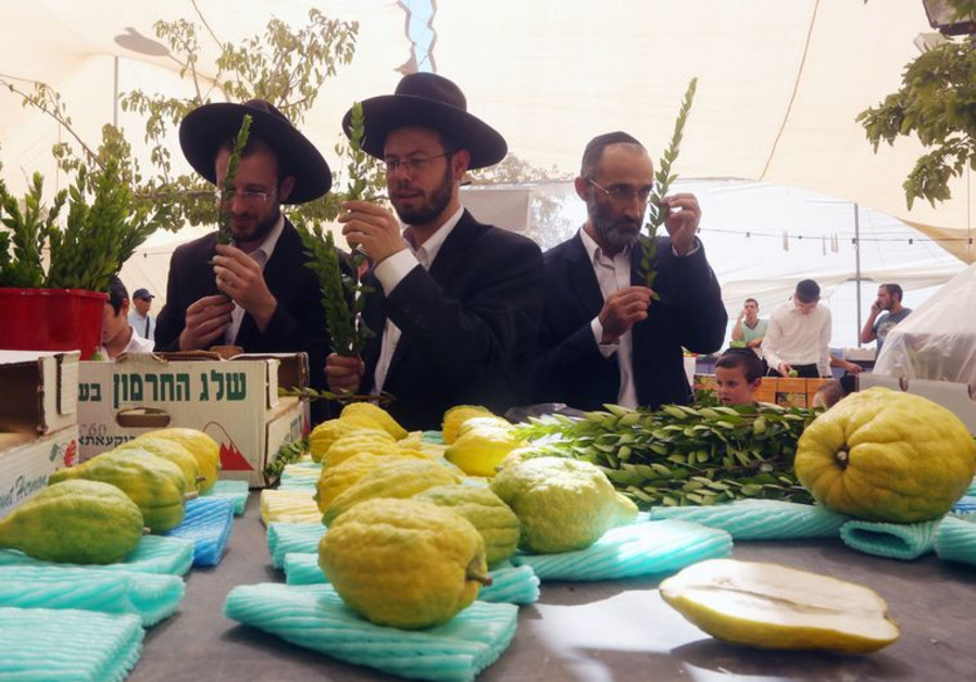 Four species in Mahaneh Yehuda
