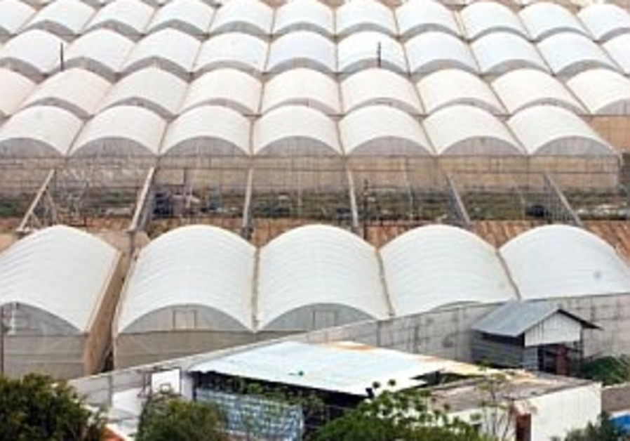 Gaza hothouse success hinges on passage accord