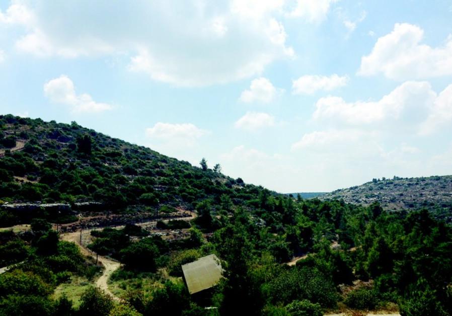 Ein Mata, l'un des secrets les mieux gardés de la vallée d'Eila