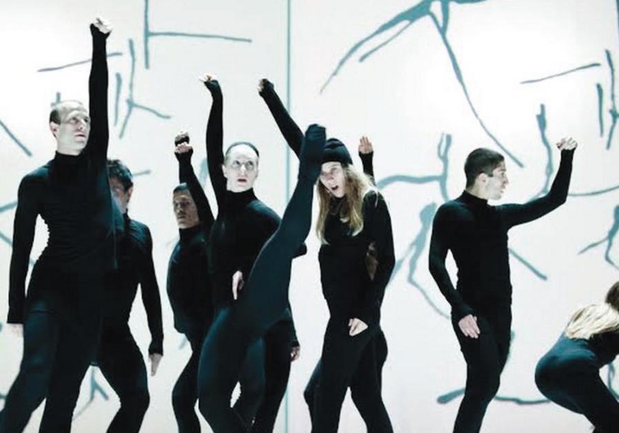 MARIE CHOUINARD COMPANY'S performance