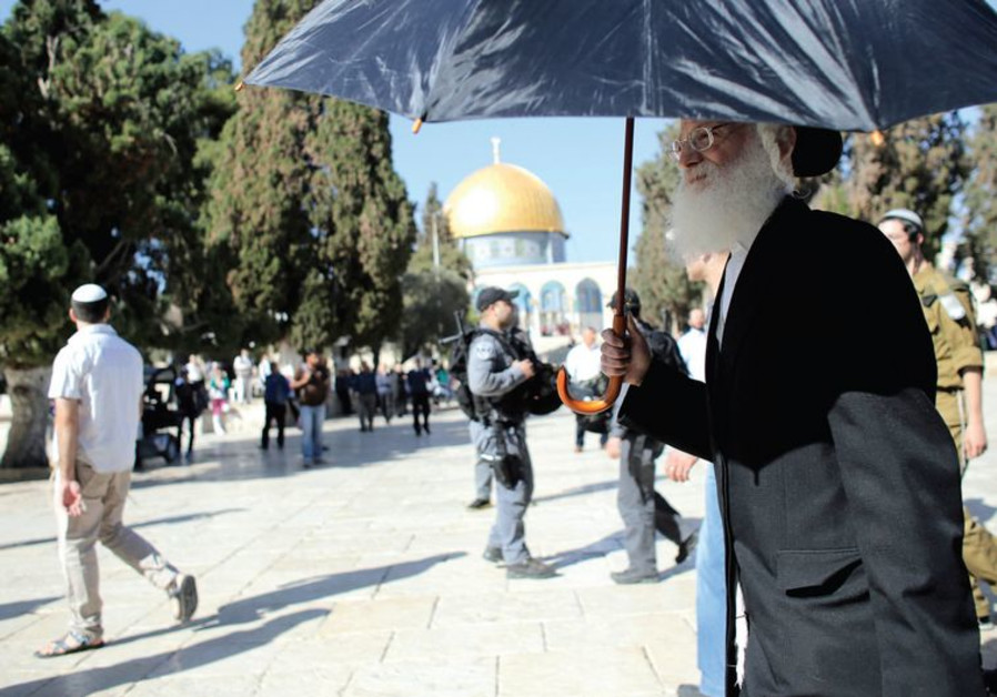 orthodox jewish temple visit