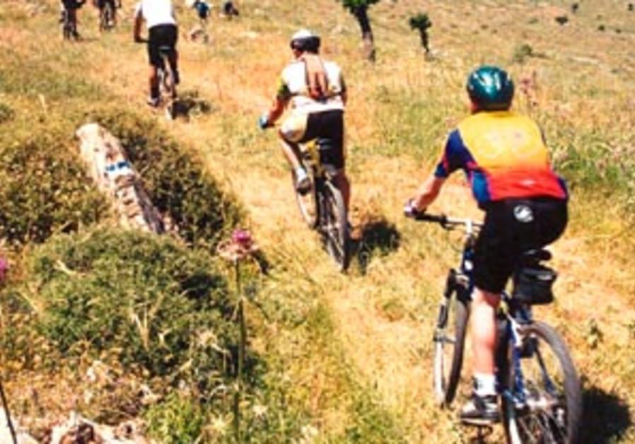 biking 88 298