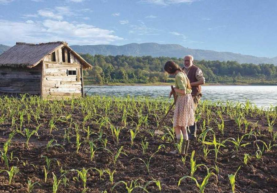 'Corn Island' film