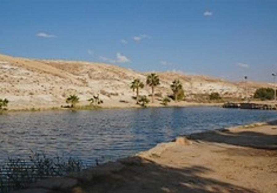 A Day in the Negev with the Australian NCJWA Delegation