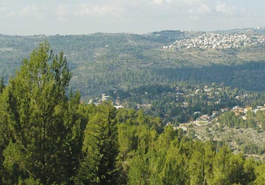 Jerusalem Forest Yad Vashem